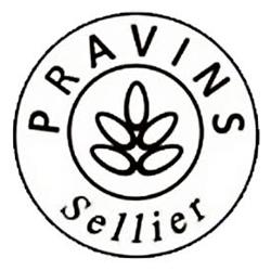 Logo Atelier Pravins