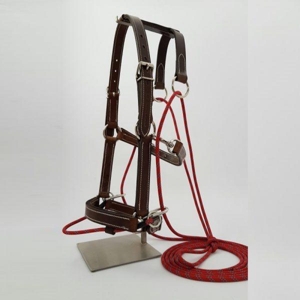 Training System designed by J. GONIN