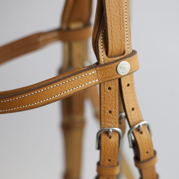 Bridle for Jumping