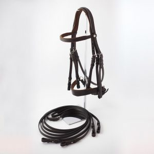 Bridle for dressage